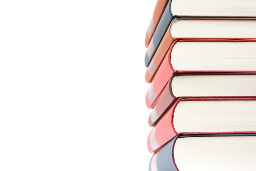 What is a Novel Study?
