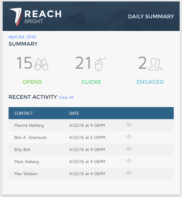 reachbright-screenshot-daily-summary